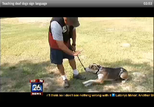 Circle K9 is on the News!